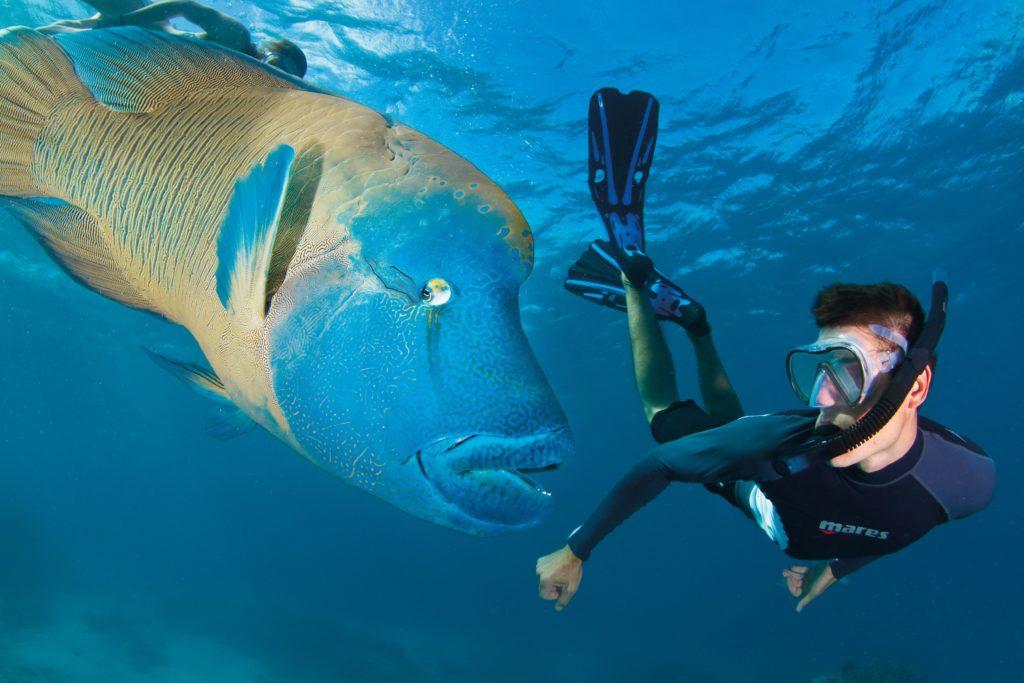 Yotspace Superyacht Voyages - Dreamtime - Snorkel Tours