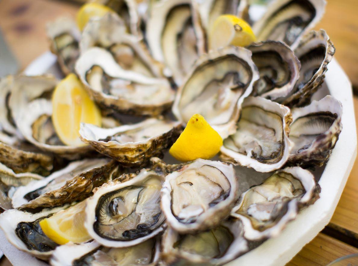 YOTSPACE - Lady Pamela on the Great Barrier Reef - 5 star cuisine