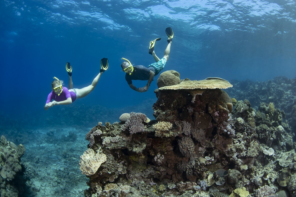 YOTSPACE superyacht voyages Great Barrier Reef - Snorkel the Whitsundays